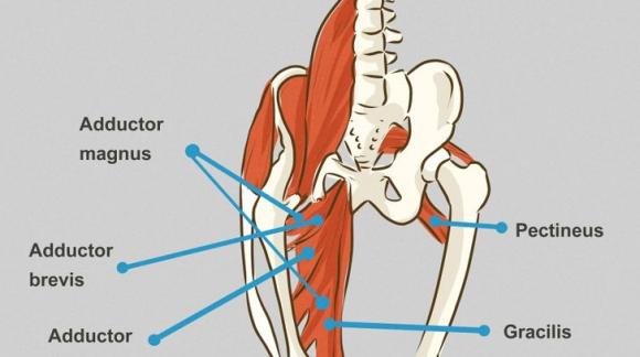 Lesión en el aductor: qué es y cómo tratarla